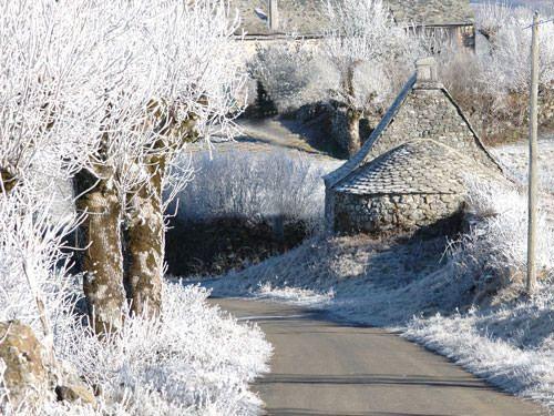 Aubrac winter landscape