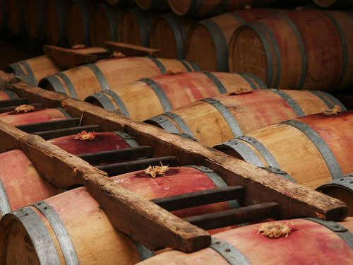 Red wine wooden barrels - Bordeaux wines