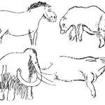 Reproduction of the various animals engraved in Combarelles Cave