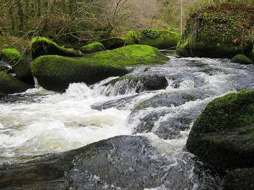 Rivière Argent in Huelgoat Forest