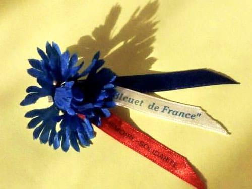 Bleuet de France worn on Remembrance Day
