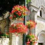 Flowers display by Eglise St. Martin in Caniac du Causse