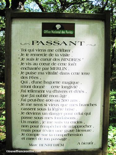 Dedication to the Chene des Hindres in Broceliande