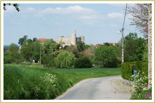 Chateau de Billy and village