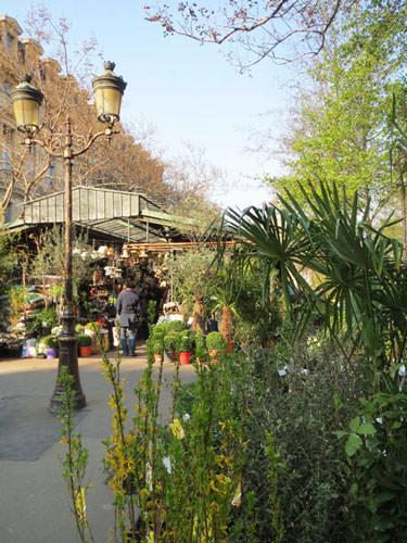 Flower Market on Ile de la Cite