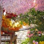 Flower Market in Paris