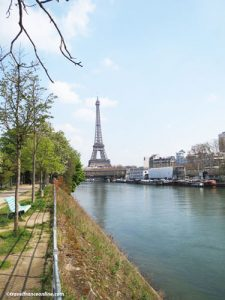 Eiffel Tower seen from Ile aux Cygnes and Statue of Liberty