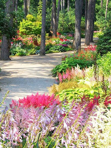 Parc Floral in Bois de Vincennes