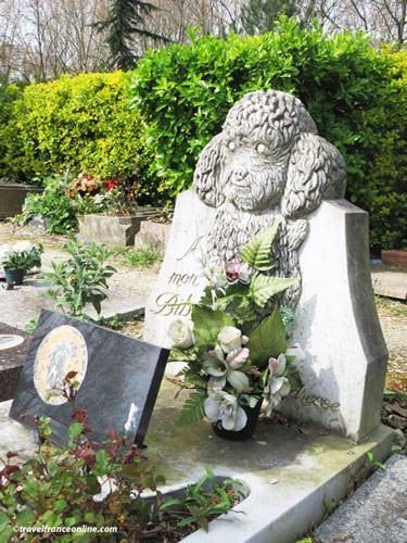 Cimetiere des Chiens - A little puddle's grave