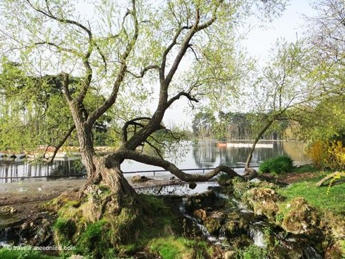Bois de Boulogne - Lac Inferieur