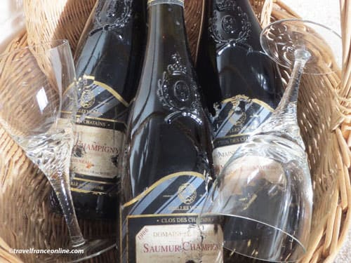 Anjou-Saumur Vineyard - Saumur-Champigny