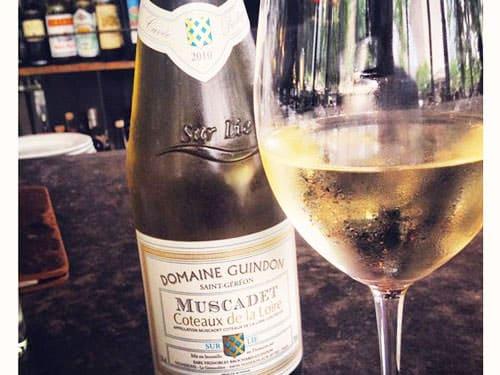Pays Nantais Vineyard - Muscadet Coteaux de la Loire