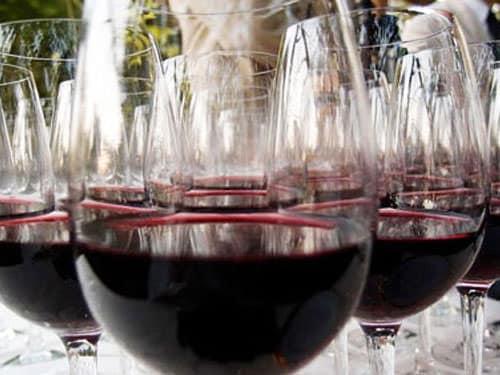 Touraine Vineyard - Tasting Chinon Rouge