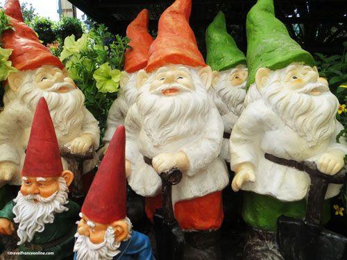 garden gnomes - nains de jardin