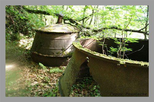 Charcoal - Abandoned furnaces