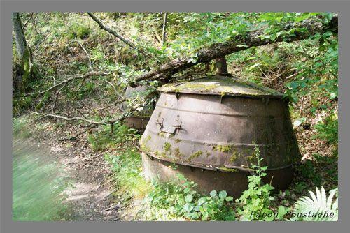 Charcoal - Abandoned furnace