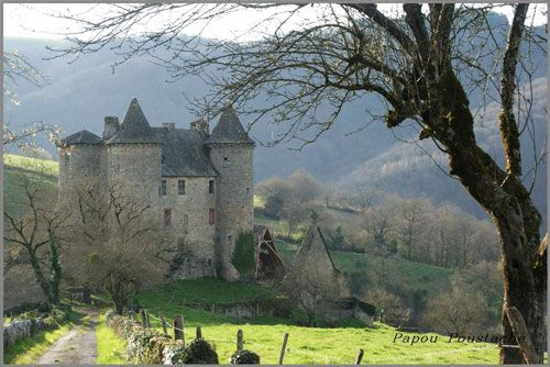 Chateau de Senezergue - La Chataigneraie in Cantal