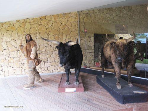 Le Thot - museum