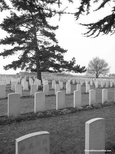 Nolette Chinese Cemetery - cedar