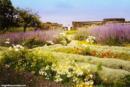 Angers castel - Medieval gardens