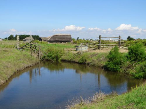 Ecomuseum Marais Vendeen - Traditional landscape in the marsh