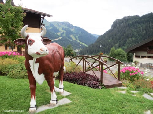 Abondance cow in Chatel