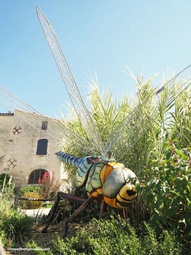 Dragonfly in front Maison du Marais Poitevin in Coulon - Poitevin Marsh