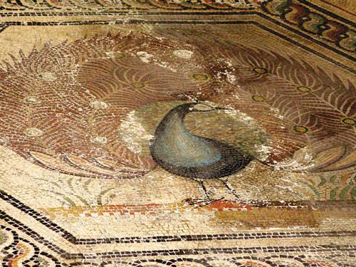 Peacok House mosaic - Vaison-la-Romaine