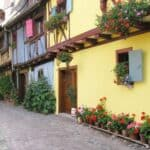 Timber framed houses and flowers in Eguisheim