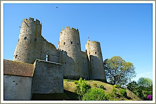 Fortress of Bourbon-l'Archambault - The three north towers