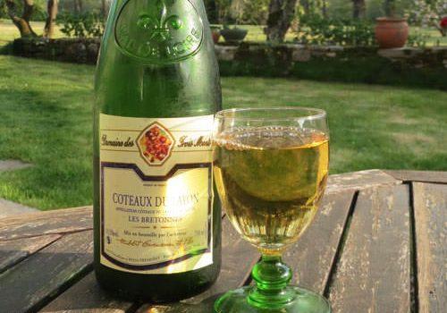 Anjou-Saumur Vineyard - Coteaux du Layon